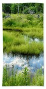 Reflected Clouds In Grass Beach Towel