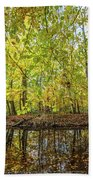 Reflected Color Of Autumn Beach Towel