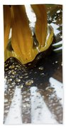 Reflected Yellow Petals Beach Towel