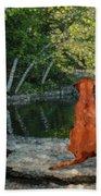 Reflecting Beach Towel