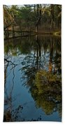 Reflecting Pond Beach Towel