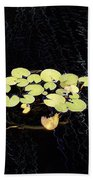 Reflecting Pool Lilies Beach Towel