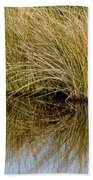 Reflecting Reeds Beach Towel