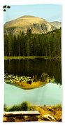 Reflection Beach Towel