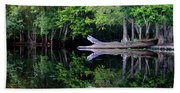 Reflection Off The Withlacoochee River Beach Towel