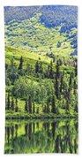 Reflections Alaska II Beach Towel