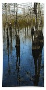 Reflections At Big Cypress Beach Towel