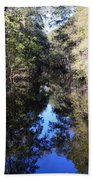 Reflections At Camps Creek  Beach Towel
