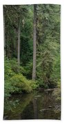 Reflections In Silver Falls State Park Beach Towel