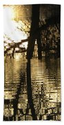 Reflections In The Pond Beach Towel