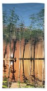 Reflections Beach Towel