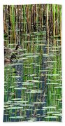 Reflections On Duck Pond Beach Towel