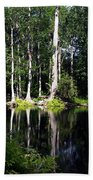 Reflections On The Ocklawaha River  Beach Towel