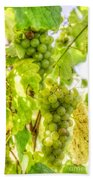 Riesling Harvest IIi Beach Towel