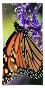 Relaxing Monarch Butterfly Beach Towel