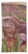 Reptile Land  Beach Towel