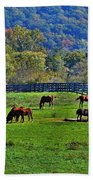 Rescue Horses Beach Towel