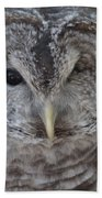 Rescue Owl Beach Towel