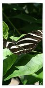 Resting - Black And White Butterfly Beach Towel