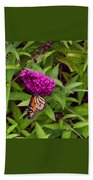 Resting Butterfly 1 Beach Towel