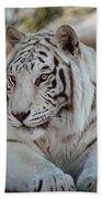 Resting Tiger Beach Towel
