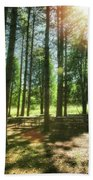 Retzer Nature Center Pine Trees Beach Towel