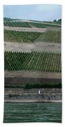 Rhine Valley Vineyards Panorama Beach Towel