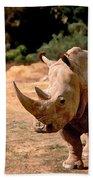 Rhino Beach Towel by Steve Karol