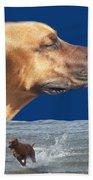 Rhodesian Ridgeback Beach Sheet