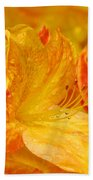 Rhodies Orange Yellow Rhododendrons Art Prints Canvas Baslee Troutman Beach Towel