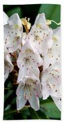 Rhododendron Family Of Flowers Beach Towel
