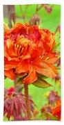 Rhododendron Flower Landscape Art Prints Floral Baslee Troutman Beach Towel