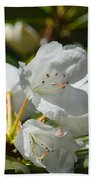 Rhododendron I Beach Towel