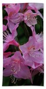 Rhododendron In The Pink Beach Towel