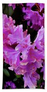 Rhododendron Pink Beach Towel