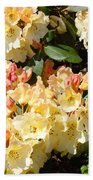 Rhododendrons Garden Art Prints Creamy Yellow Orange Rhodies Baslee Beach Towel