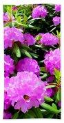 Rhododendrons In Bloom Beach Towel