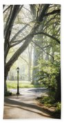 Rhythm Of The Trees Beach Towel