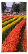 Ribbons Of Color Beach Towel