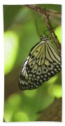 Rice Paper Butterfly Clinging To A Tree Branch Beach Towel