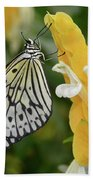 Rice Paper Butterfly Beach Towel