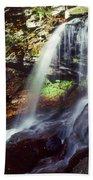 Ricketts Glen Falls 029 Beach Towel
