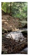 Ricketts Glen Falls 030 Beach Towel