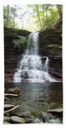 Ricketts Glen Waterfall Beach Towel