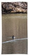 Ring-necked Duck Formation Beach Towel