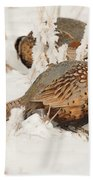 Ring-necked Pheasant Hunting In The Snow Beach Towel