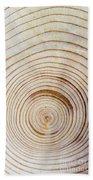 Rings Of A Tree Beach Towel