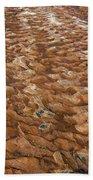 River Bed Beach Towel