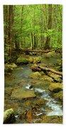 River Crossing On The Maryland Appalachian Trail Beach Towel