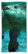 River Otter Beach Towel